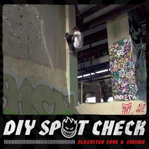 sf-diy-spot-check-300