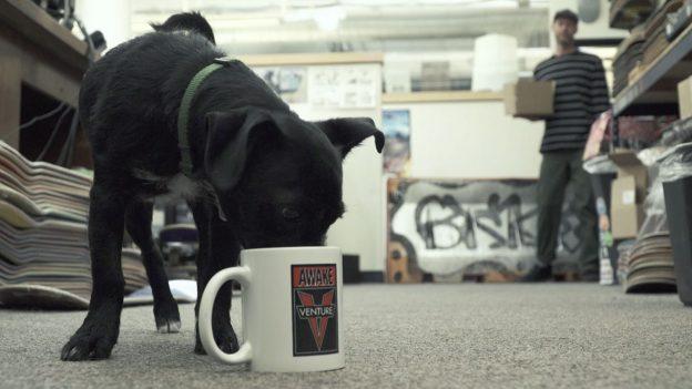 dlxsf-mug