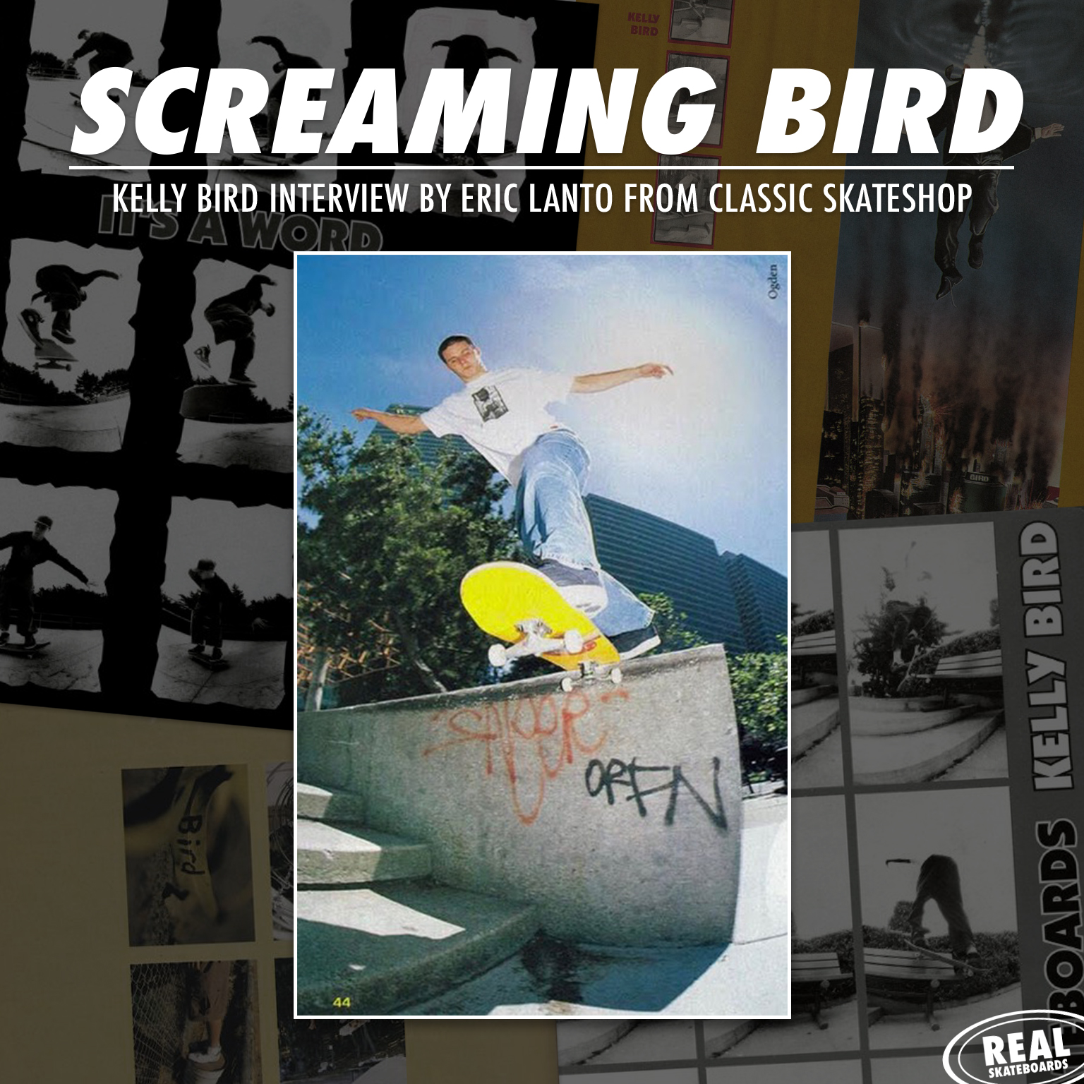 rs-screaming-bird-release-image-ig